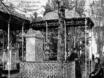 Старый Воронеж 2705