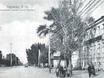 Старый Воронеж 2776