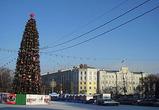 Главная ёлка Воронежа будет ненастоящей