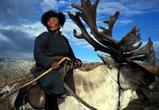 Гордеев уехал в Монголию