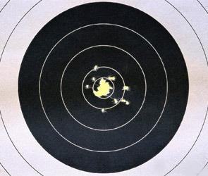 Воронежским чиновникам дали в руки оружие