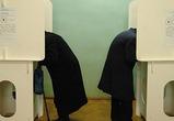 Общественная организация выявила нарушения прав избирателей в Воронежской области