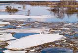 В Воронежской области начинается весеннее половодье