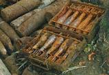 «Черный копатель» из Воронежской области распродавал мины из заброшенного хранилища боеприпасов
