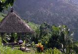 Турист из Воронежа подхватил на острове Бали лихорадку Денге