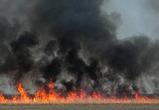 В российской деревне жители вместе с сухой травой сожгли 6 домов