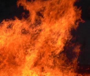 Семилетняя девочка спасла родственников во время пожара