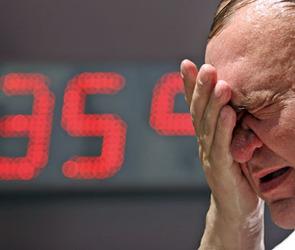В Воронежскую область пришла аномальная жара