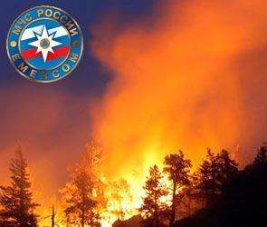 Итоги пресс-конференции по пожарам в Воронежской области