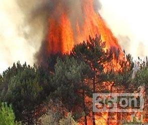 Очередной пожар в Воронежской области привёл к эвакуации людей