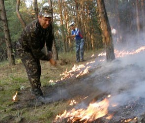 В результате пожаров в Воронеже погибли люди