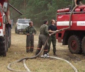 Все пожары в Воронеже и области локализованы
