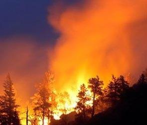 В Воронеже и Воронежской области продолжаются сильные пожары