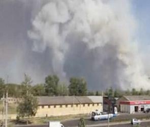 Сильный лесной пожар в Тамбове (ВИДЕО)