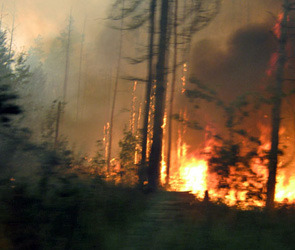 Поджигатели орудуют в некоторых регионах страны