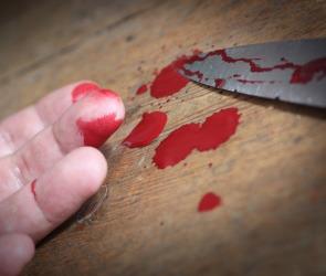 В Воронеже женщина зарезала своего мужа