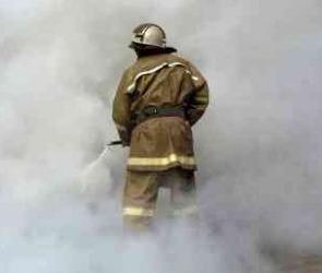 Последняя информация о пожарной ситуации в Воронежской области