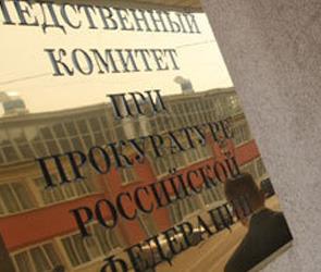 СКП проверит качество работы милиции по поиску Лизы Фомкиной и её тёти