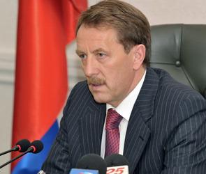 Губернатор Воронежской области встретился с представителями венгерской делегации
