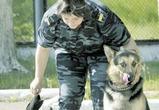 Воронежский детский лагерь навестили служебные собаки