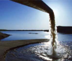 В Воронежской области сточные воды предприятия уничтожили  рыбу в реке