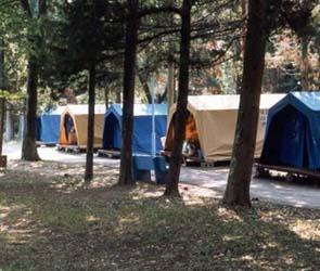 В Воронежской области ликвидировали нелегальный лагерь