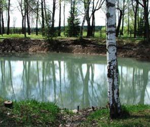 Под Воронежем рыбак ограбил администраторскую пруда