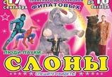 Воронежцы смогут увидеть шоу слонов и медведей