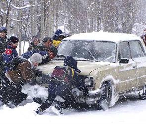 МЧС предупреждает: на Воронежскую область надвигается штормовой ветер