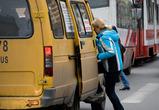 Воронеж может лишиться половины автобусов