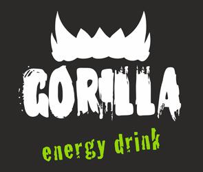 Gorilla eXtreme Cup Winter 2012: Voronezh Qualifiers