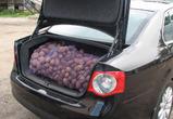 Как открыть багажник ногой – предложение концерна «Форд»