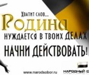 В Воронеже прошла конференция «Народного собора»