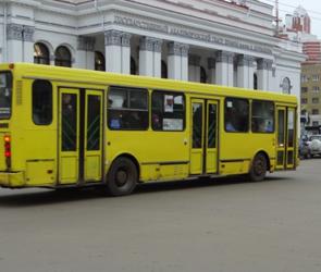 В Воронеже по-прежнему будут курсировать «Народные маршруты»