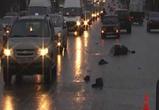ВОГРЭСовский мост: неизвестным водителем насмерть сбит пешеход
