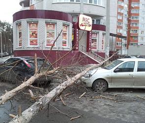 ЧП в Воронеже: ветер обрушил кусок кровли и деревья на автомобили