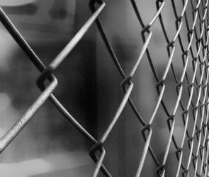 Как сделать забор из сетки рабицы в Воронеже?