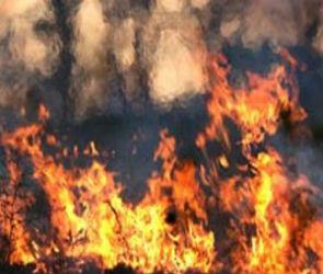 Строительные материалы по группам пожарной опасности