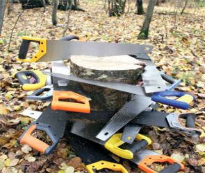 Магазин инструментов - ножовка по дереву
