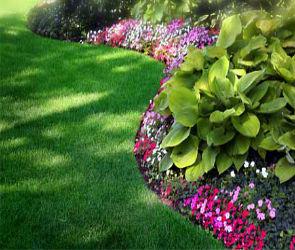 Ландшафтный дизайн - виды декоративных газонов