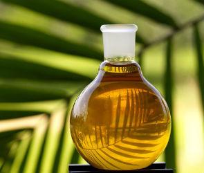 Пальмовое масло наносит вред здоровью (видео)