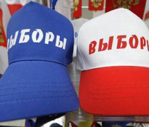 Число политических партий в Воронеже стремительно растет