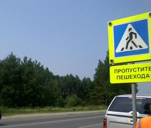 На пешеходных переходах  в Воронеже появятся световые индикаторы