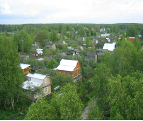 Житель Воронежской области обокрал дачный домик