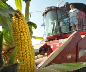 Сельское хозяйство - сбор урожая 2012