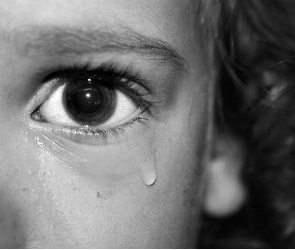 Неизвестный изнасиловал школьницу в Воронежской области