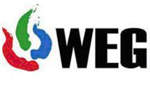 WEG Masters 2008: Финалы
