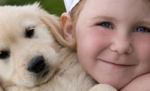 Домашние животные и ребенок