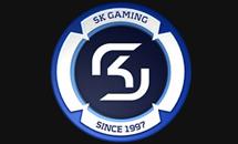 История SK