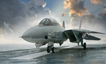 Названа предварительная причина крушения МиГ-29 под Читой